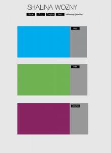 Portfolio Design Wozny-02